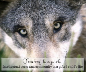 Finding Her Pack 2 - Gifted, Different, And Friendless? Here's How To Help Her Find Her Pack - Gifted/2e Parenting