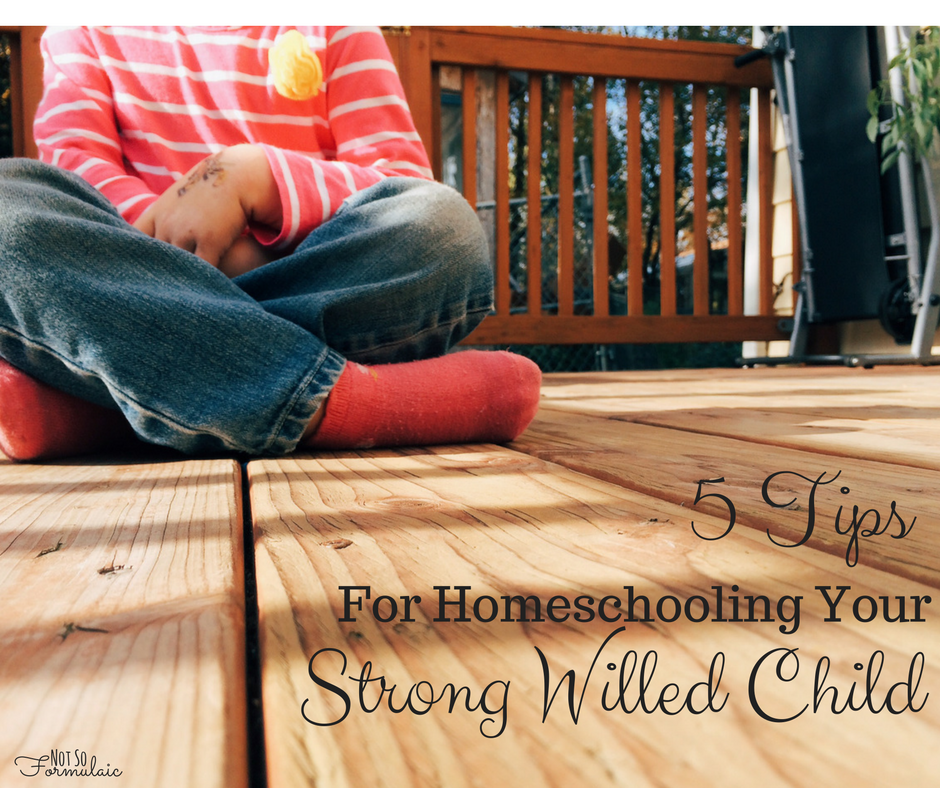 Are you homeschooling a strong-willed child? Here are five tips for homeschooling her.