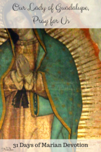 Our Lady of Guadalupe, pray for us. Part of the 31 Days of Devotion to our Blessed Mother.
