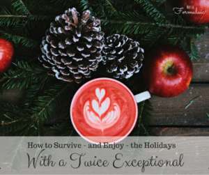 How to survive – and enjoy – the holidays with a Twice Exceptional