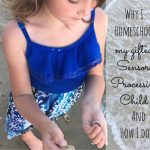 Why I Homeschool my Gifted, Sensory Processing Child, and How