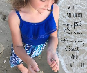 Homeschoolingspd - Why I Homeschool My Gifted, Sensory Processing Child, And How - Gifted/2e Education