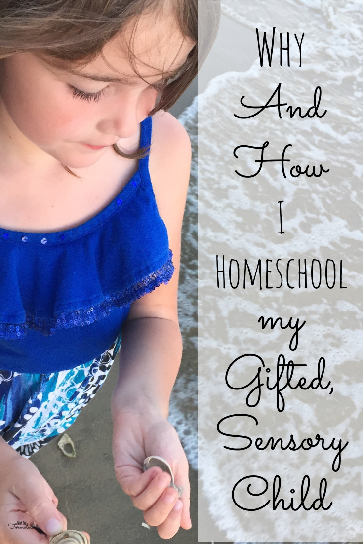 I homeschool my gifted, sensory processing disorder child. You can, too. Here's why - and how.