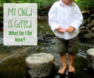 My Childis Gifted - Is Your Child Gifted? Here's What I Wish I Had Known - Gifted/2e Parenting
