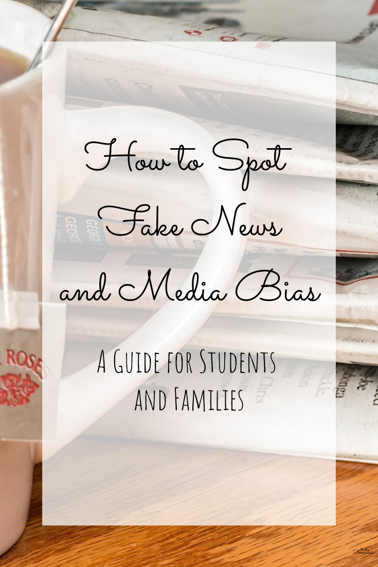 How do you spot fake news and media bias? With a little old fashioned critical thinking! Here's a short course on evaluating an argument, complete with a handy printable.