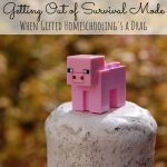 Getting Out of Survival Mode: When Gifted Homeschooling is a Drag