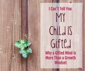 I Can't Tell You My Child is Gifted: Why a Gifted Mind is More Than a Growth Mindset
