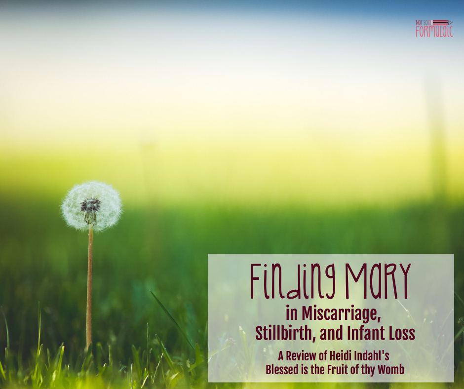 Finding Mary in Miscarriage, Stillbirth, and Infant Loss: a Review of Blessed is the Fruit of Thy Womb