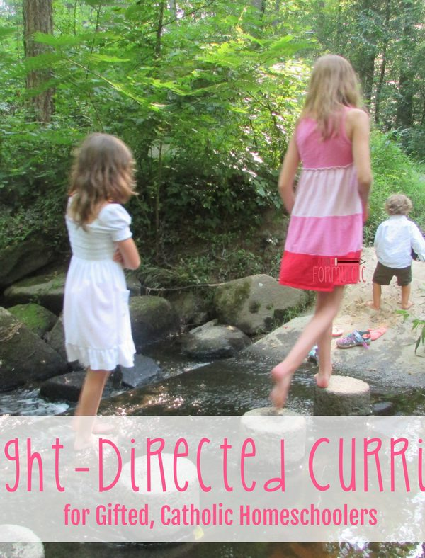 Delight-Directed Curricula for Gifted, Catholic Homeschoolers