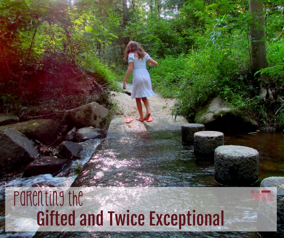 Gifted And Twice Exceptional Parenting