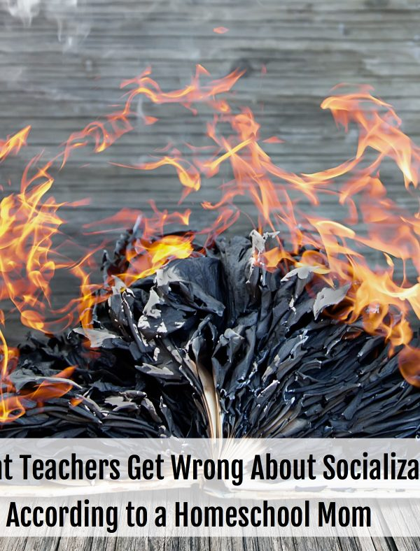 What Teachers Get Wrong About Socialization, According to a Homeschool Mom