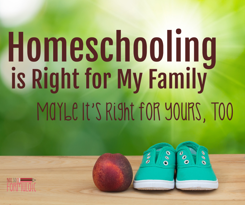 I Homeschool Because it's Right for My Family. Maybe It's Right for Yours, Too