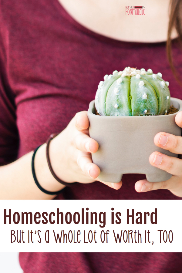 #Homeschooling is hard, but just because something is hard doesn't mean it's not absolutely worth it. Take an honest look at the ups and downs of homeschooling in this honest and encouraging read. #Christianhomeschooling #Homeschoolencouragement #Catholichomeschooling