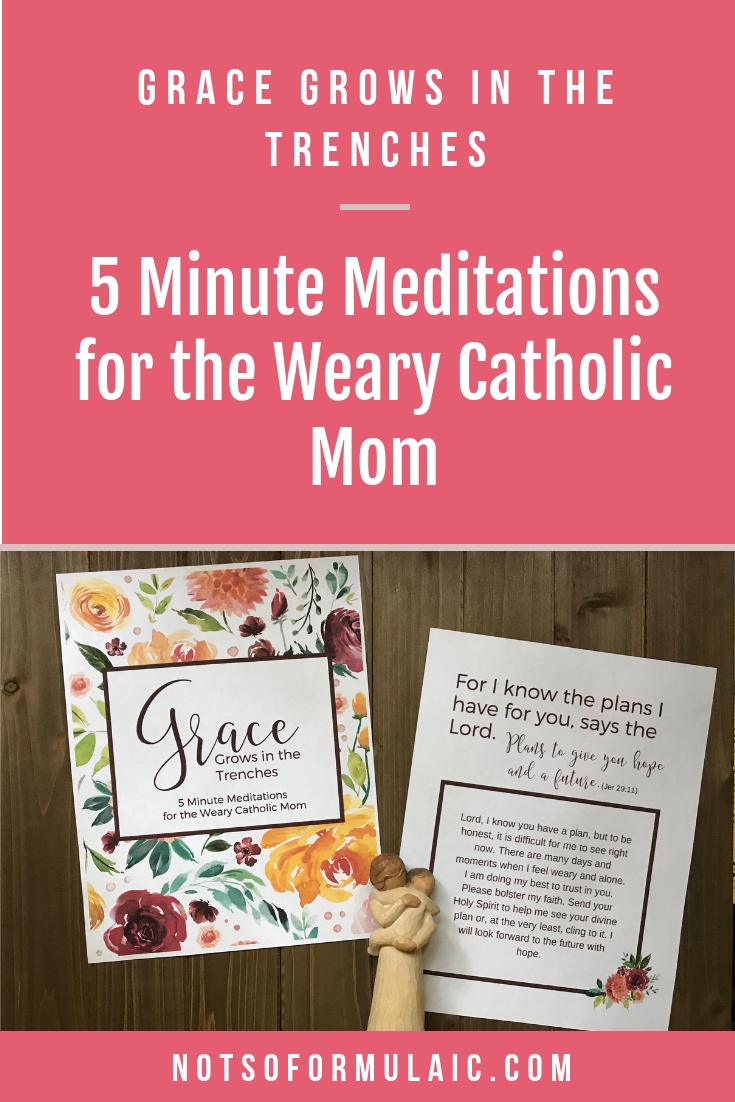 InGrace Grows in the Trenches: 5 Minute Meditations for the Weary Catholic Mom, you'll find inspiration from Scripture and holy men and women who knew what it meant to live one's life for another. Honest reflections, heartfelt prayers, and thoughtful questions will guide you to your rest in the heart of God.