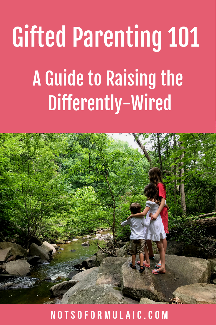 Every gifted child is unique and unrepeatable. Chances are, your parenting will be, too. From busting the myths and misconceptions surrounding gifted children to reveling in the unimaginable joys, here's my not so formulaic guide to raising, teaching, and loving the differently-wired.