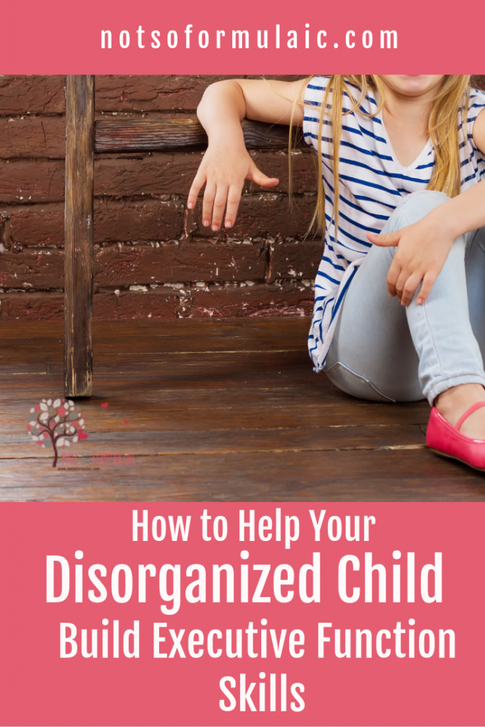A child's impulsive behavior and disorganization are neither behavioral problems nor character flaws. It's not a matter of training so much as it is wiring. Here's how to help your child develop executive function skills.